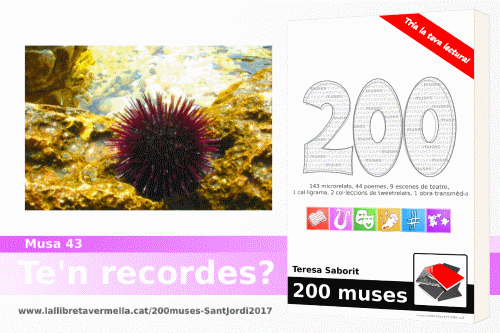 20170409-Millor_microrelat_llibre_200_muses-Sant_Jordi_2017-Guanyador_final
