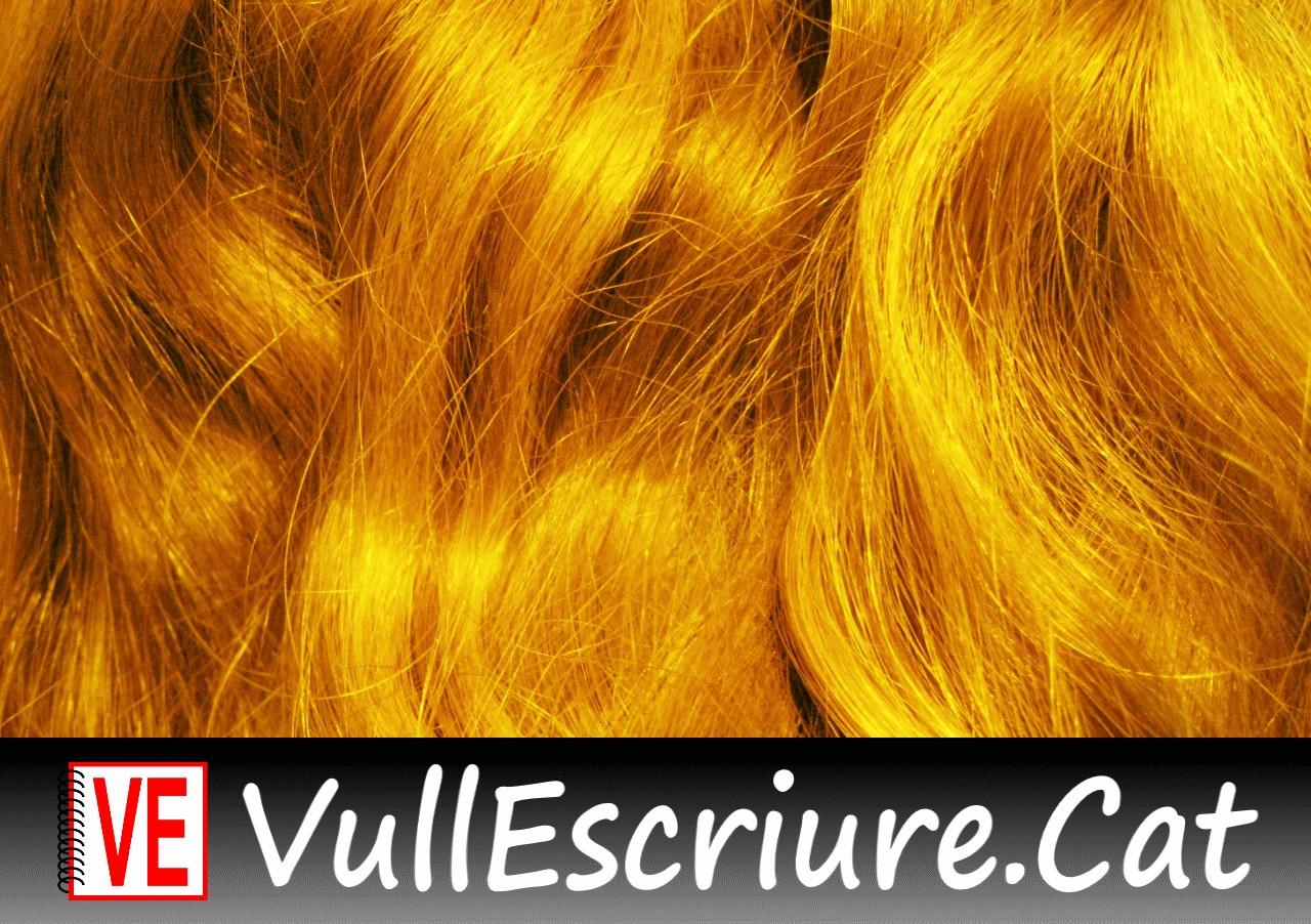 20171116-Vull_Escriure-Rapunzel-Grimm-Golden_hair-Karen-Flickr