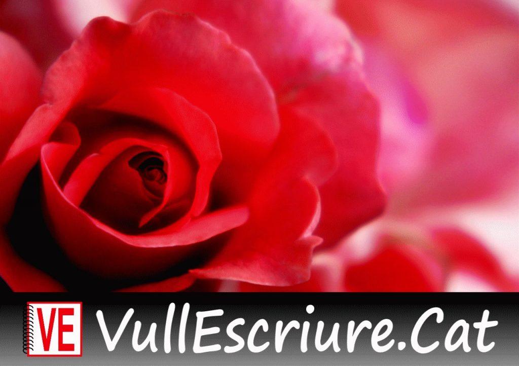20180222-Vull_Escriure-Blancaneus-Jove_esclava-Basile-Rose-Aldo_Cauchi_Savona-Flickr