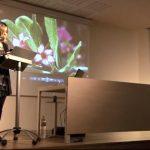 El Prat TV i El Prat Ràdio parlen de «Pecats poètics»