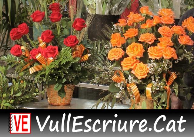 20180313-Vull_Escriure-Llibre-Roses_Sant_Jordi