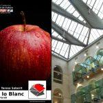 «Tirant lo Blanc» a Lleida